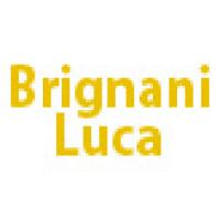 Brignani Luca